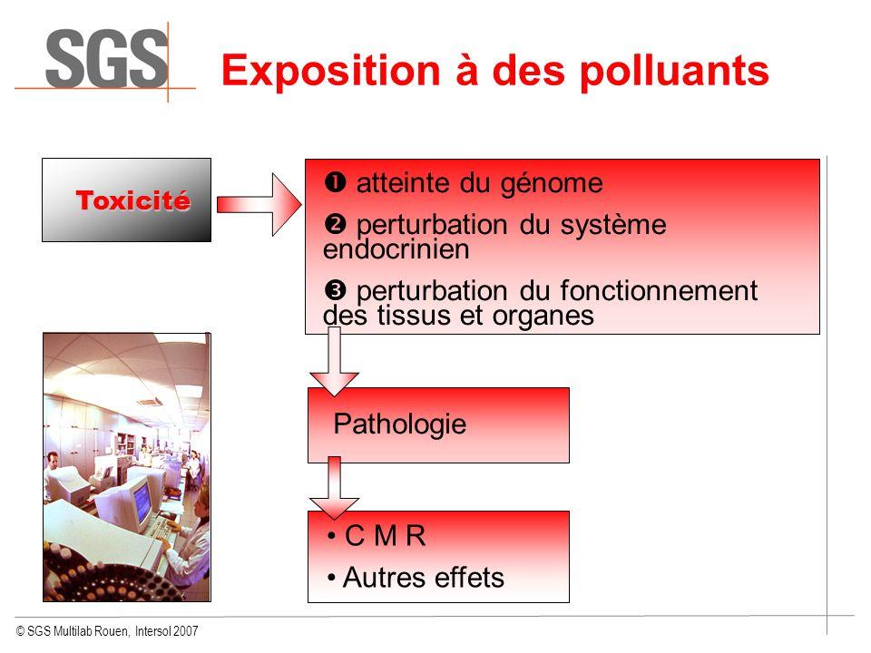 © SGS Multilab Rouen, Intersol 2007 Exposition à des polluants Toxicité atteinte du génome perturbation du système endocrinien perturbation du fonctio