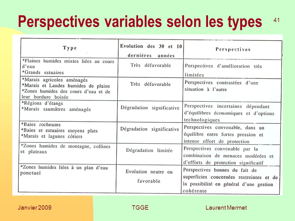 Laurent Mermet 41 Janvier 2009TGGE Perspectives variables selon les types