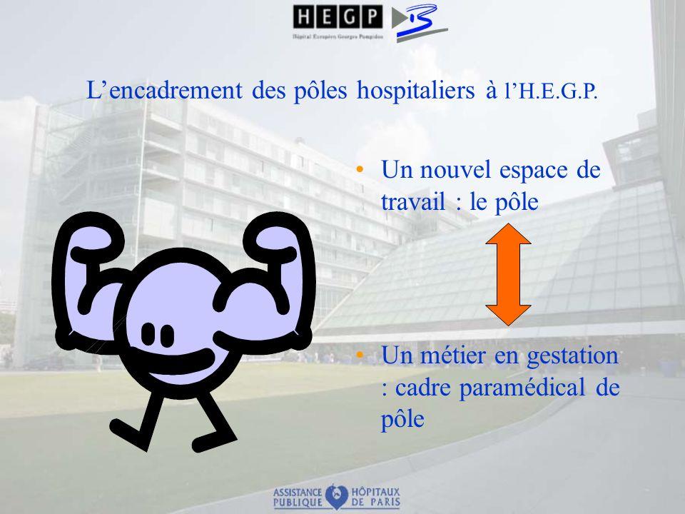 Lencadrement des pôles hospitaliers à lH.E.G.P. Un nouvel espace de travail : le pôle Un métier en gestation : cadre paramédical de pôle