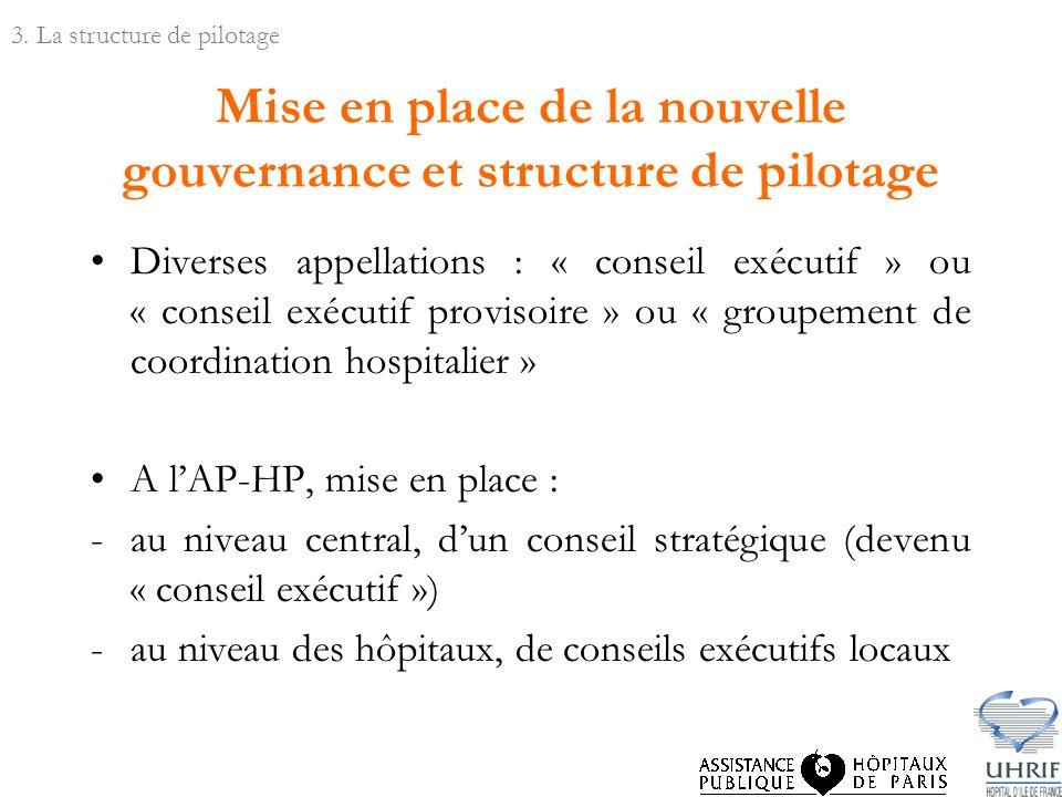Mise en place de la nouvelle gouvernance et structure de pilotage Diverses appellations : « conseil exécutif » ou « conseil exécutif provisoire » ou «