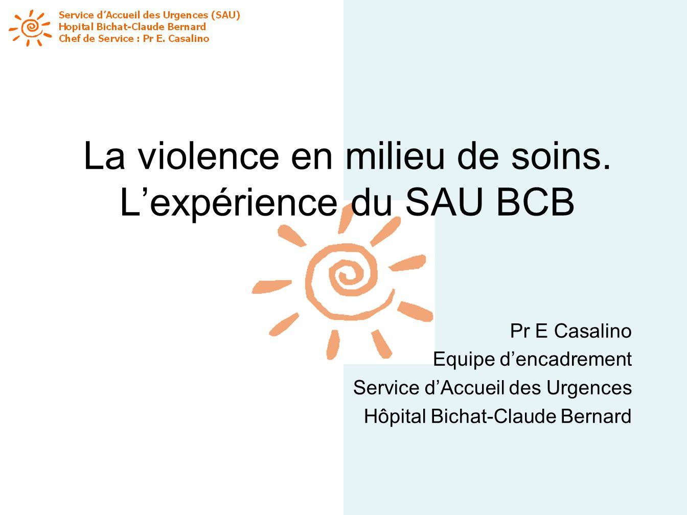 La violence en milieu de soins. Lexpérience du SAU BCB Pr E Casalino Equipe dencadrement Service dAccueil des Urgences Hôpital Bichat-Claude Bernard