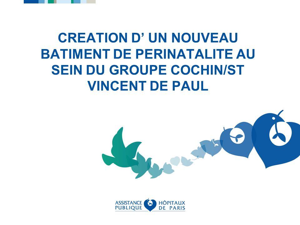 CREATION D UN NOUVEAU BATIMENT DE PERINATALITE AU SEIN DU GROUPE COCHIN/ST VINCENT DE PAUL