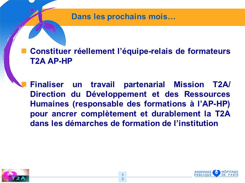 13 Dans les prochains mois… Constituer réellement léquipe-relais de formateurs T2A AP-HP Finaliser un travail partenarial Mission T2A/ Direction du Dé