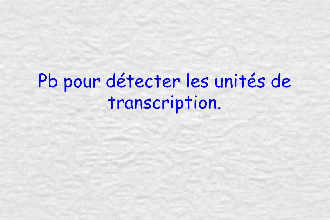 Pb pour détecter les unités de transcription.