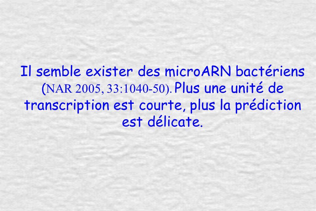 Il semble exister des microARN bactériens ( NAR 2005, 33:1040-50).