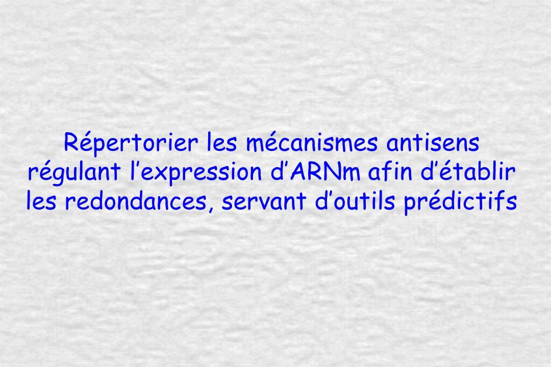 Répertorier les mécanismes antisens régulant lexpression dARNm afin détablir les redondances, servant doutils prédictifs