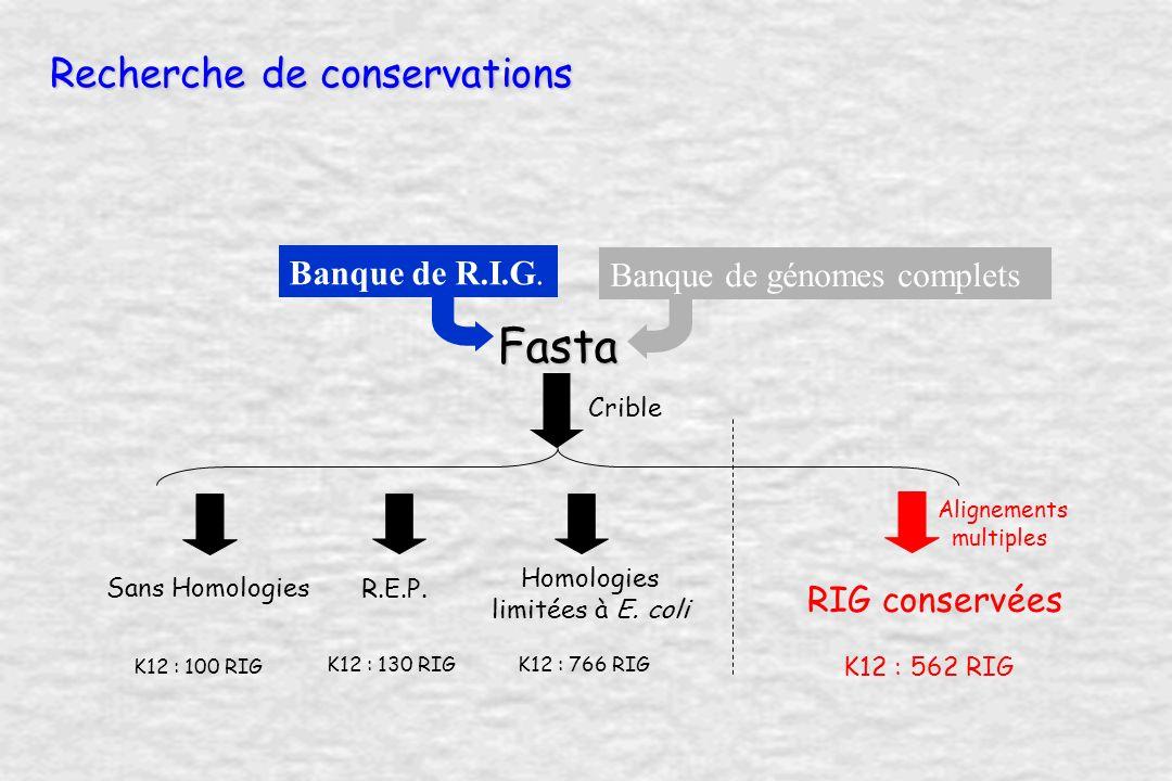 Recherche de conservations Banque de génomes complets Banque de R.I.G.