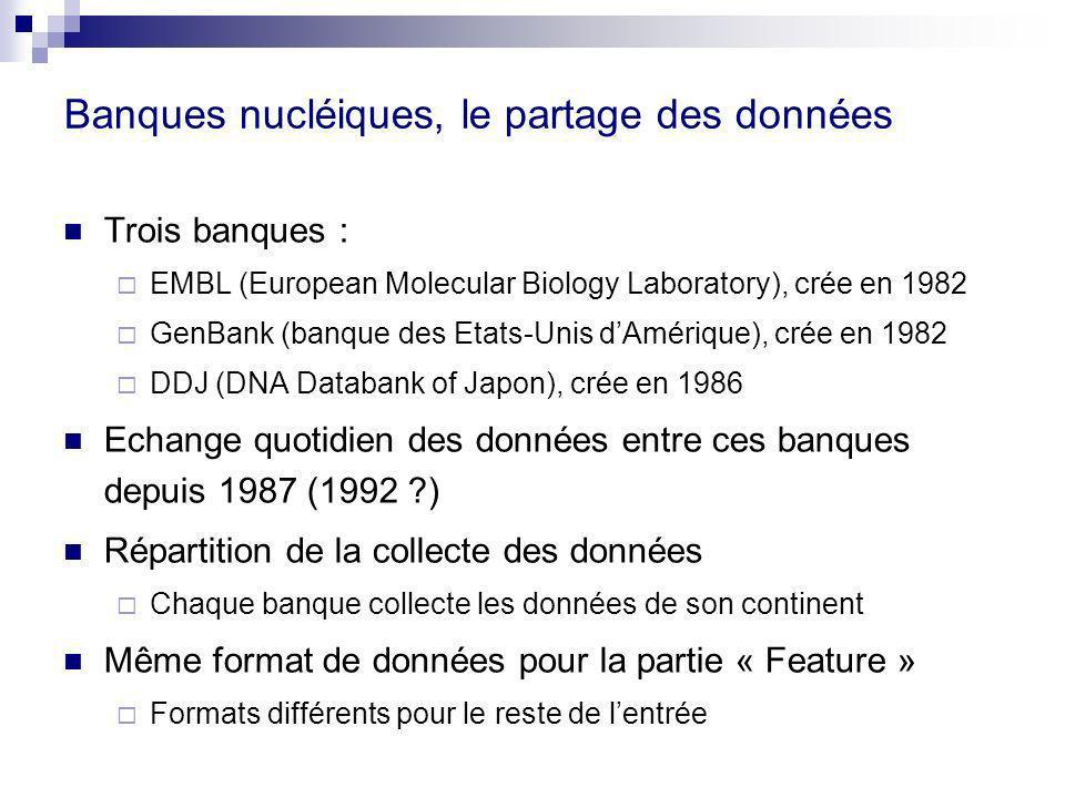 Banques nucléiques, le partage des données Trois banques : EMBL (European Molecular Biology Laboratory), crée en 1982 GenBank (banque des Etats-Unis dAmérique), crée en 1982 DDJ (DNA Databank of Japon), crée en 1986 Echange quotidien des données entre ces banques depuis 1987 (1992 ?) Répartition de la collecte des données Chaque banque collecte les données de son continent Même format de données pour la partie « Feature » Formats différents pour le reste de lentrée