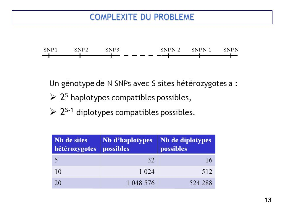 13 COMPLEXITE DU PROBLEME Un génotype de N SNPs avec S sites hétérozygotes a : 2 S haplotypes compatibles possibles, 2 S-1 diplotypes compatibles poss