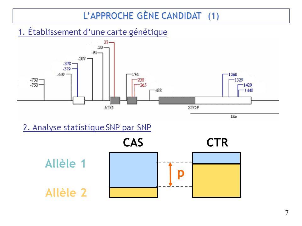 LAPPROCHE GÈNE CANDIDAT (1) 1. Établissement dune carte génétique 2. Analyse statistique SNP par SNP p Allèle 1 Allèle 2 CASCTR 7