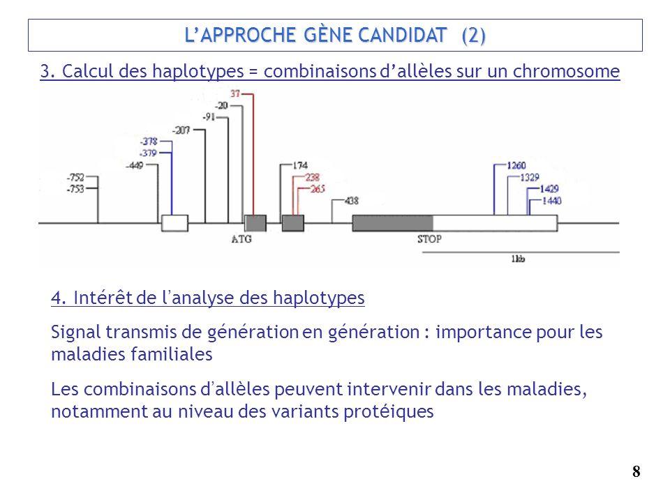 LAPPROCHE GÈNE CANDIDAT (2) 3. Calcul des haplotypes = combinaisons dallèles sur un chromosome 4. Intérêt de l analyse des haplotypes Signal transmis