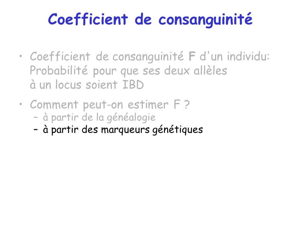 Coefficient de consanguinité Coefficient de consanguinité F d'un individu: Probabilité pour que ses deux allèles à un locus soient IBD Comment peut-on