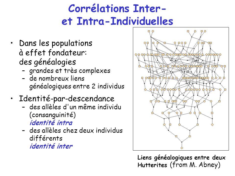 Corrélations Inter- et Intra-Individuelles Dans les populations à effet fondateur: des généalogies –grandes et très complexes –de nombreux liens généa
