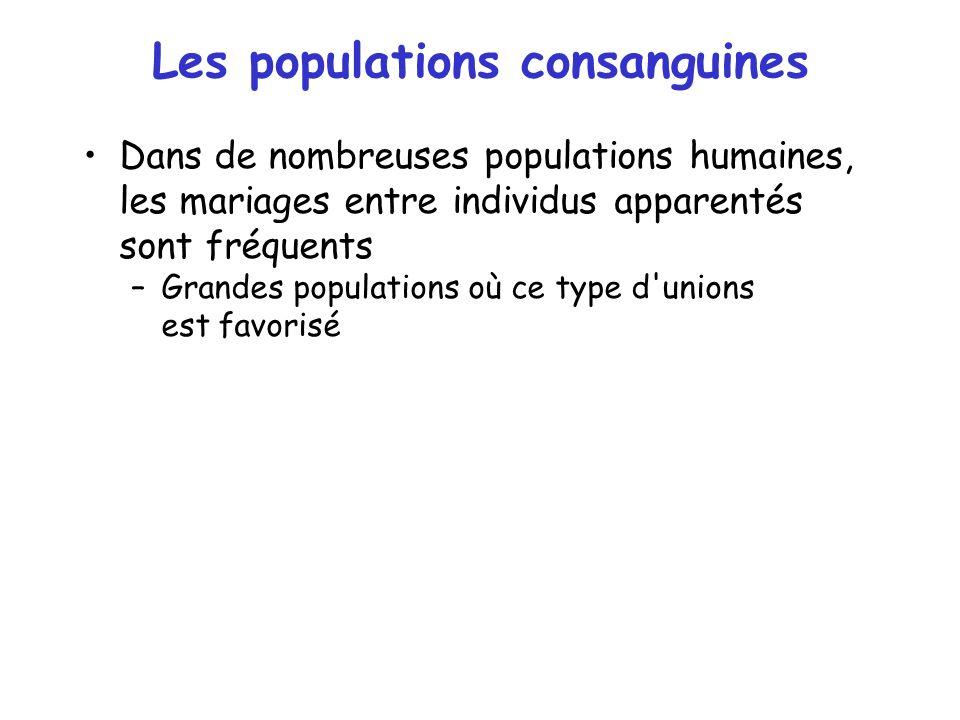 Les populations consanguines Dans de nombreuses populations humaines, les mariages entre individus apparentés sont fréquents –Grandes populations où c