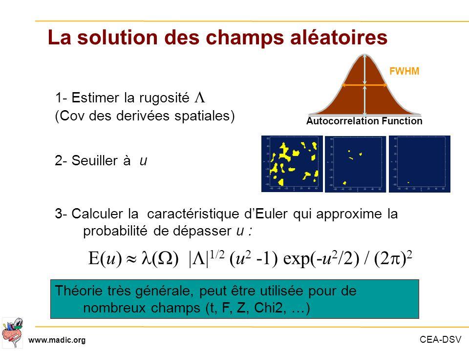 CEA-DSV www.madic.org La solution des champs aléatoires Autocorrelation Function FWHM 1- Estimer la rugosité (Cov des derivées spatiales) 2- Seuiller