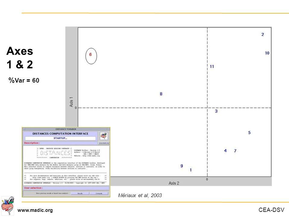 CEA-DSV www.madic.org Axes 1 & 2 % Var = 60 Mériaux et al, 2003