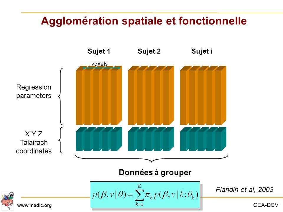 CEA-DSV www.madic.org Regression parameters X Y Z Talairach coordinates Sujet 1Sujet 2Sujet i Données à grouper Agglomération spatiale et fonctionnell