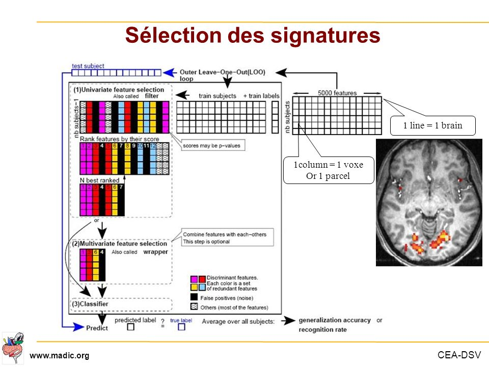 CEA-DSV www.madic.org Sélection des signatures 1 line = 1 brain 1column = 1 voxe Or 1 parcel
