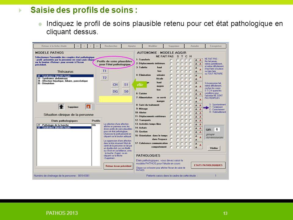 PATHOS 2013 13 Indiquez le profil de soins plausible retenu pour cet état pathologique en cliquant dessus. Saisie des profils de soins : clic