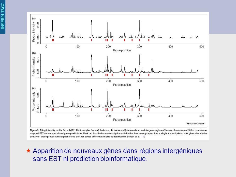 INSERM TAGC Apparition de nouveaux gènes dans régions intergéniques sans EST ni prédiction bioinformatique.