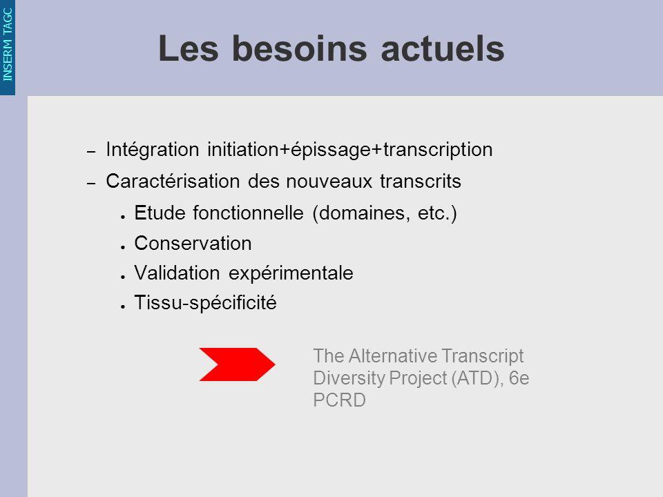 INSERM TAGC Les besoins actuels – Intégration initiation+épissage+transcription – Caractérisation des nouveaux transcrits Etude fonctionnelle (domaines, etc.) Conservation Validation expérimentale Tissu-spécificité The Alternative Transcript Diversity Project (ATD), 6e PCRD