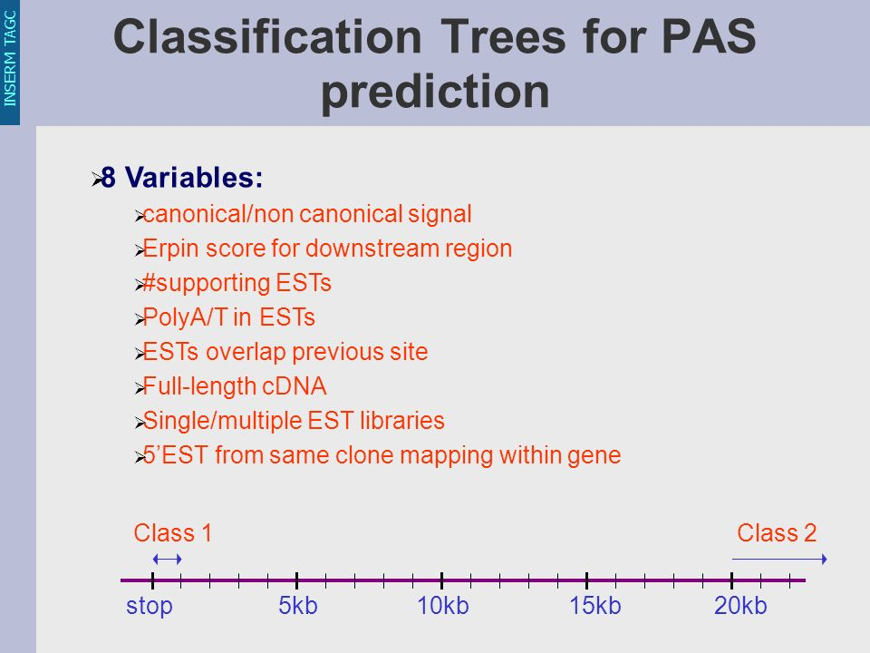 INSERM TAGC Classification Trees for PAS prediction 8 Variables: canonical/non canonical signal Erpin score for downstream region #supporting ESTs Pol