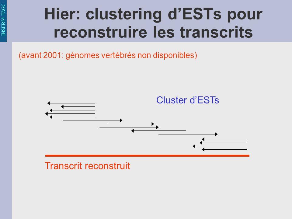 INSERM TAGC Hier: clustering dESTs pour reconstruire les transcrits Transcrit reconstruit Cluster dESTs (avant 2001: génomes vertébrés non disponibles)