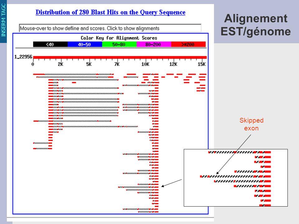 INSERM TAGC Skipped exon Alignement EST/génome