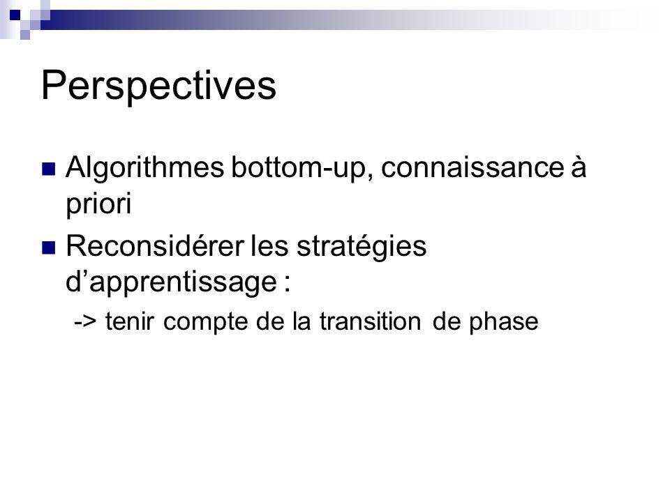 Perspectives Algorithmes bottom-up, connaissance à priori Reconsidérer les stratégies dapprentissage : -> tenir compte de la transition de phase