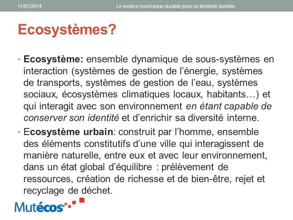 Ecosystèmes? Ecosystème: ensemble dynamique de sous-systèmes en interaction (systèmes de gestion de lénergie, systèmes de transports, systèmes de gest
