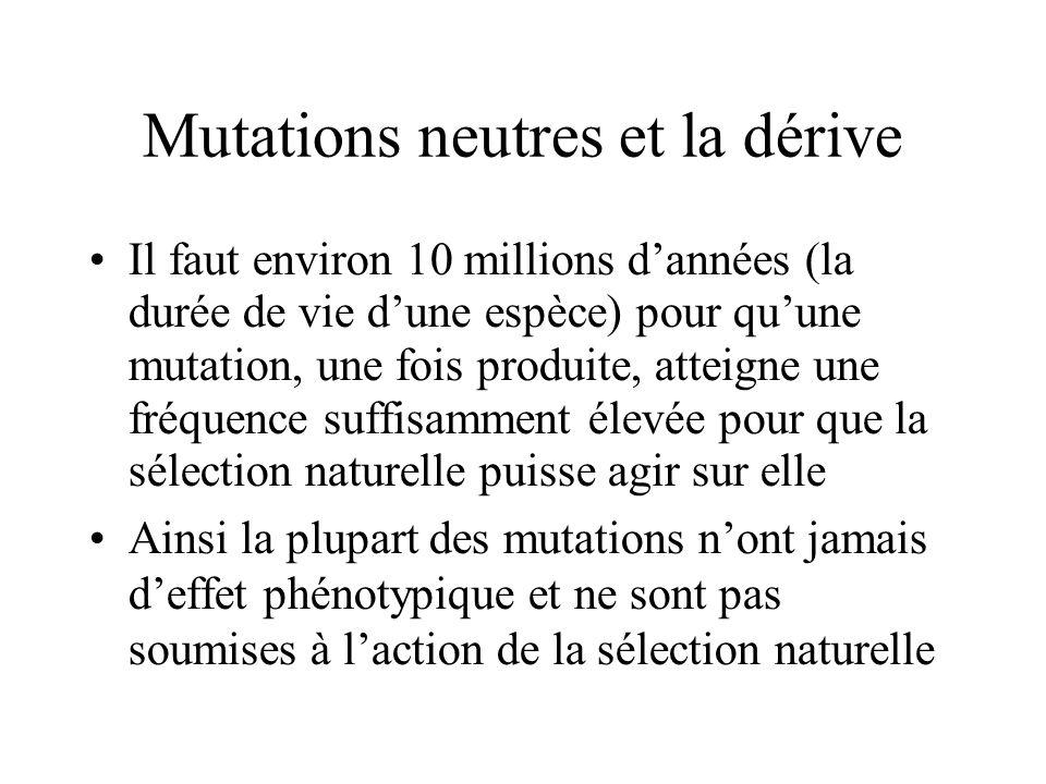 Mutations neutres et la dérive Il faut environ 10 millions dannées (la durée de vie dune espèce) pour quune mutation, une fois produite, atteigne une fréquence suffisamment élevée pour que la sélection naturelle puisse agir sur elle Ainsi la plupart des mutations nont jamais deffet phénotypique et ne sont pas soumises à laction de la sélection naturelle