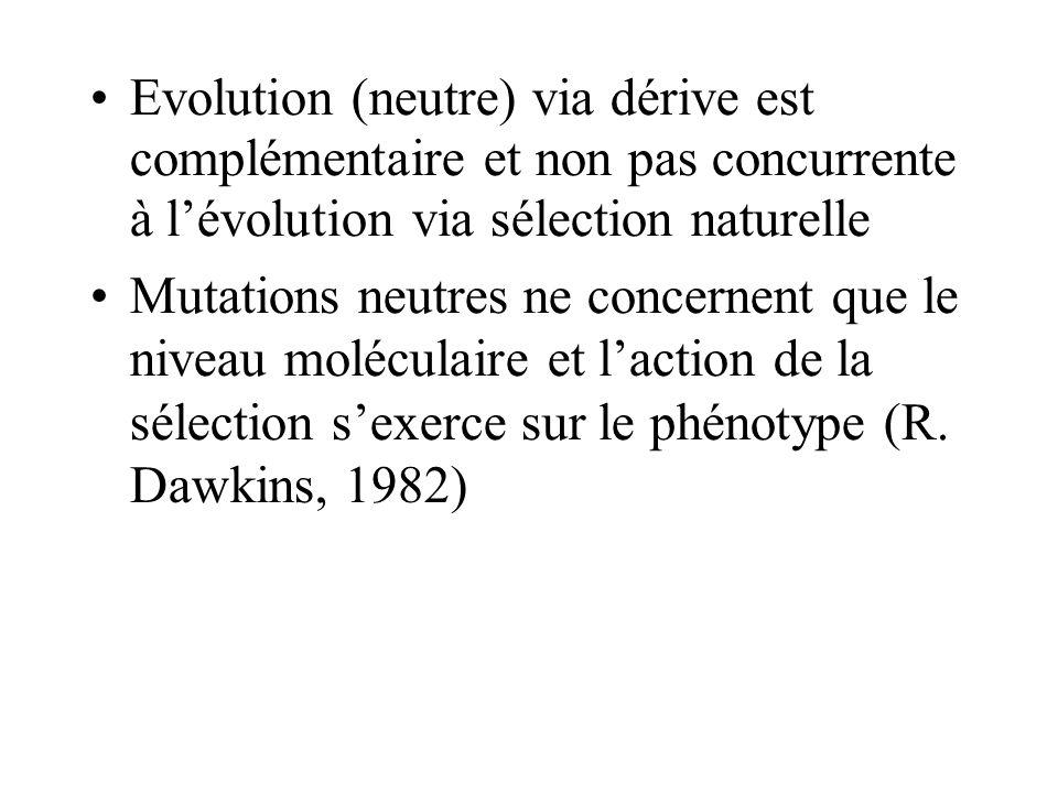 Evolution (neutre) via dérive est complémentaire et non pas concurrente à lévolution via sélection naturelle Mutations neutres ne concernent que le niveau moléculaire et laction de la sélection sexerce sur le phénotype (R.