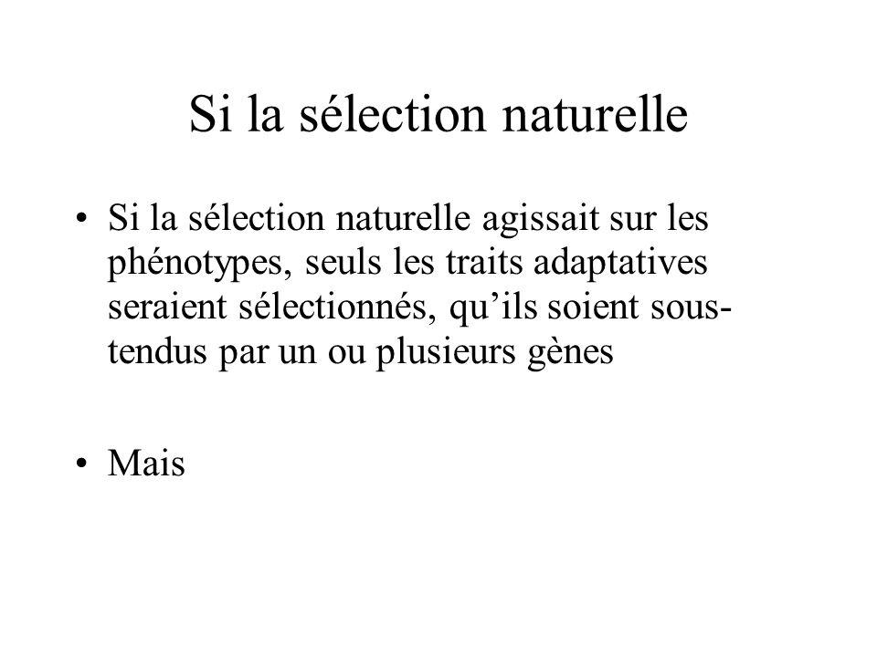 Si la sélection naturelle Si la sélection naturelle agissait sur les phénotypes, seuls les traits adaptatives seraient sélectionnés, quils soient sous- tendus par un ou plusieurs gènes Mais