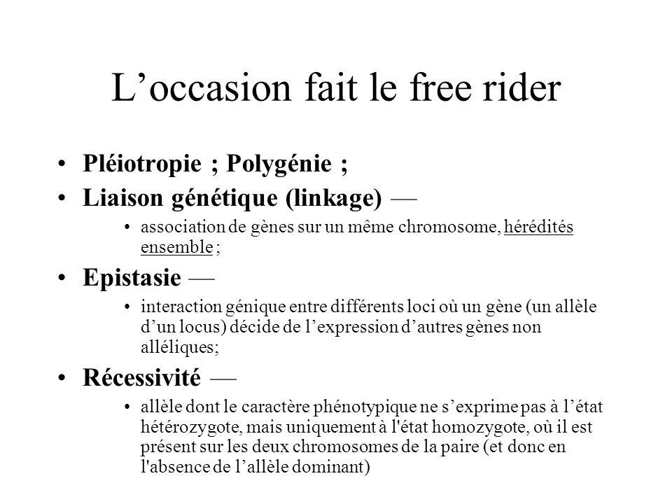 Loccasion fait le free rider Pléiotropie ; Polygénie ; Liaison génétique (linkage) association de gènes sur un même chromosome, hérédités ensemble ; E