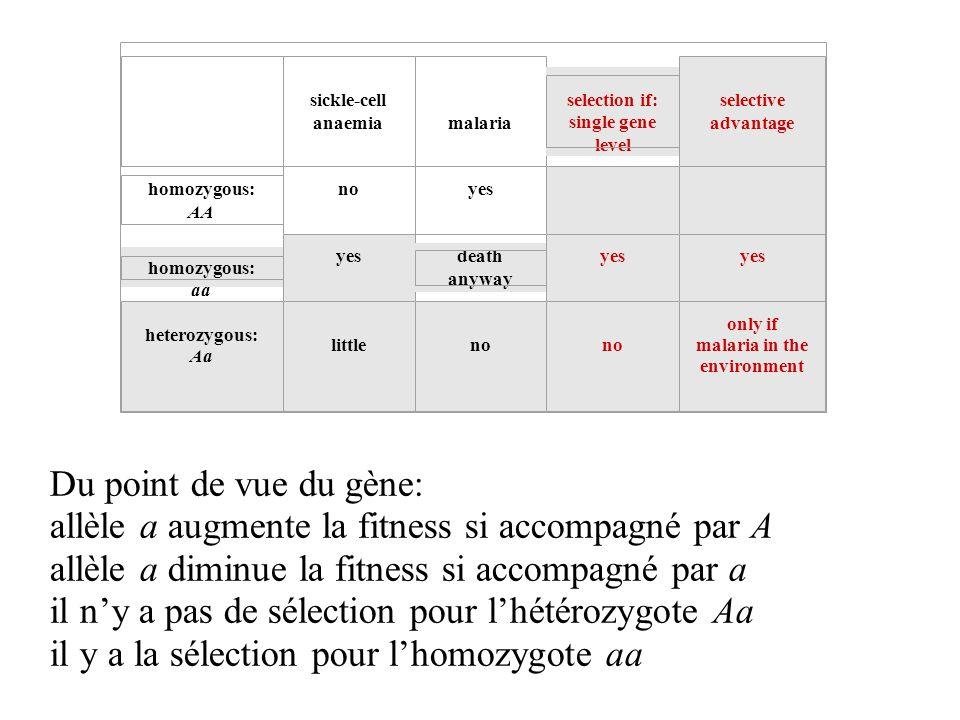 Du point de vue du gène: allèle a augmente la fitness si accompagné par A allèle a diminue la fitness si accompagné par a il ny a pas de sélection pou
