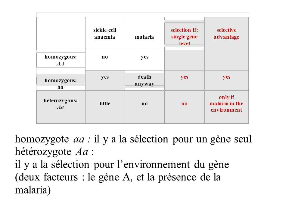 homozygote aa : il y a la sélection pour un gène seul hétérozygote Aa : il y a la sélection pour lenvironnement du gène (deux facteurs : le gène A, et