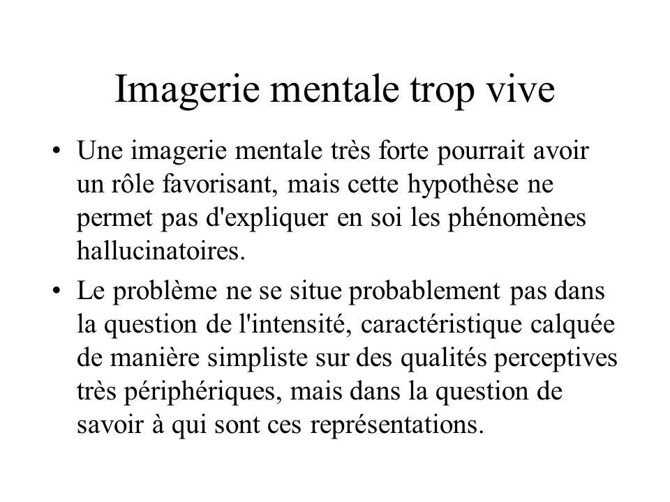 Imagerie mentale trop vive Une imagerie mentale très forte pourrait avoir un rôle favorisant, mais cette hypothèse ne permet pas d expliquer en soi les phénomènes hallucinatoires.