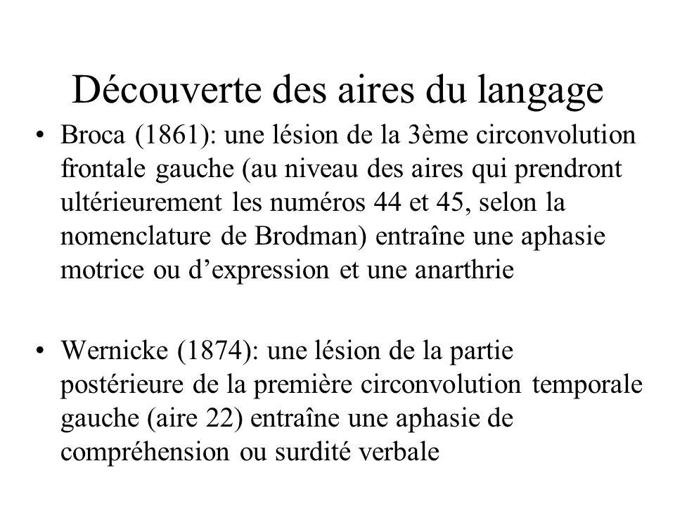 Découverte des aires du langage Broca (1861): une lésion de la 3ème circonvolution frontale gauche (au niveau des aires qui prendront ultérieurement les numéros 44 et 45, selon la nomenclature de Brodman) entraîne une aphasie motrice ou dexpression et une anarthrie Wernicke (1874): une lésion de la partie postérieure de la première circonvolution temporale gauche (aire 22) entraîne une aphasie de compréhension ou surdité verbale