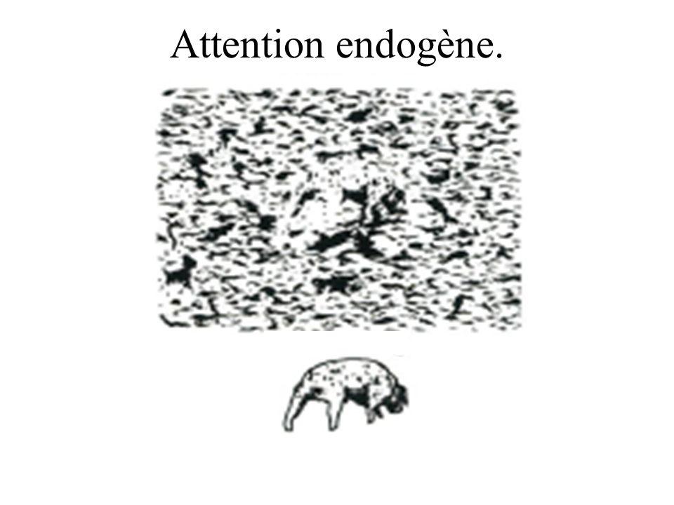 L attention au niveau d un neurone de MT