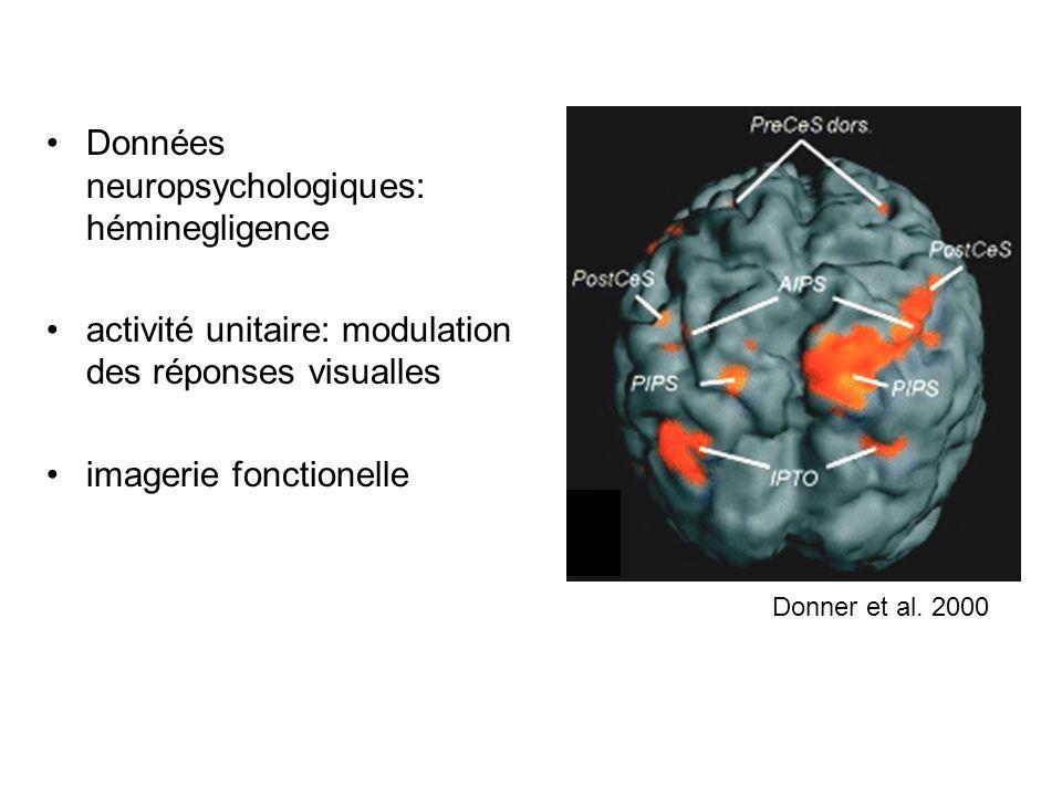 Données neuropsychologiques: héminegligence activité unitaire: modulation des réponses visualles imagerie fonctionelle Donner et al. 2000