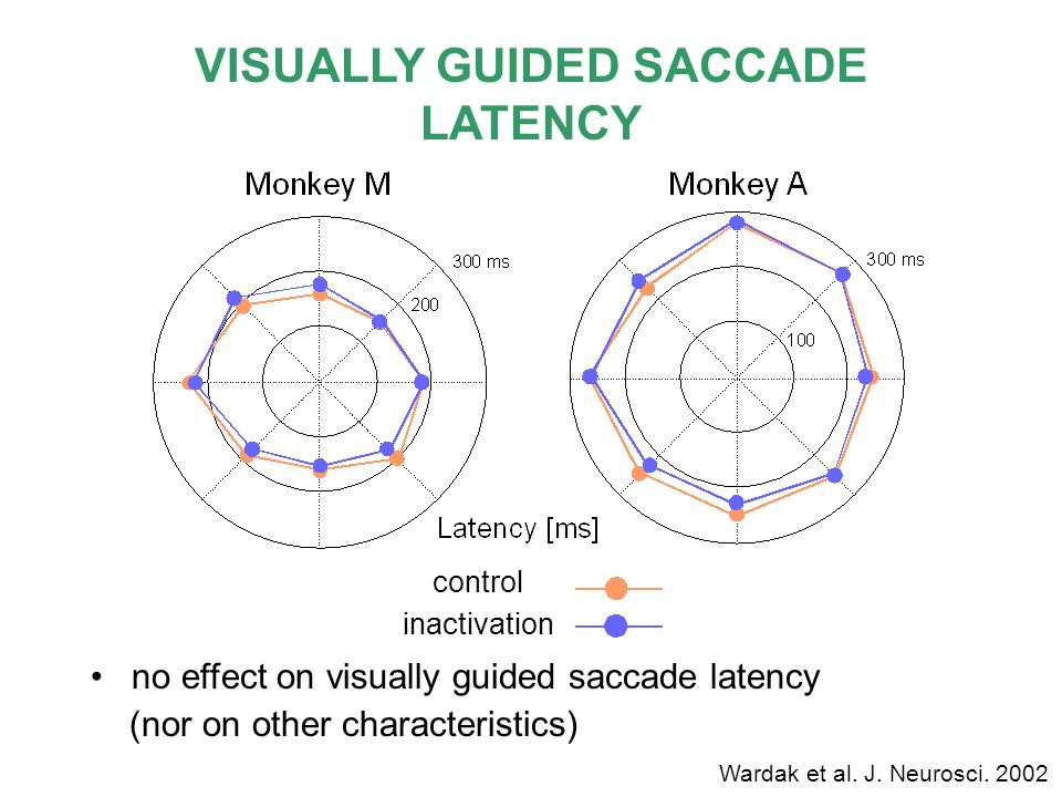 VISUALLY GUIDED SACCADE LATENCY no effect on visually guided saccade latency (nor on other characteristics) control inactivation Wardak et al. J. Neur