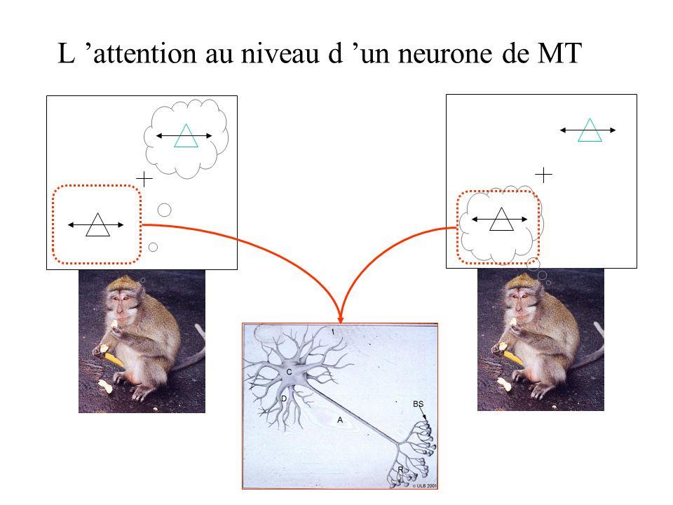 Effet de lattention sur les neurones de laire MT: - Lanimal doit relâcher une manette quand le stimulus en mouvement change de vitesse - 2 stimuli, un dans le CR, lautre à lextérieur du CR - Un indice prélable lui indique quel est le stimulus pertinent Attention sélective au mouvement dans l aire MT
