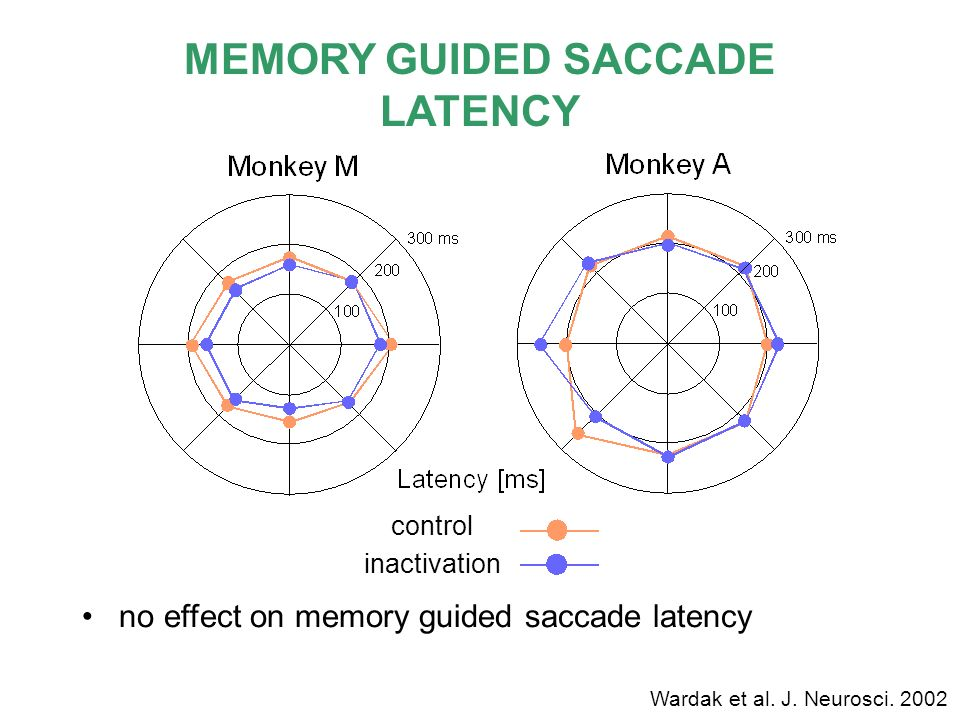 MEMORY GUIDED SACCADE LATENCY no effect on memory guided saccade latency control inactivation Wardak et al. J. Neurosci. 2002