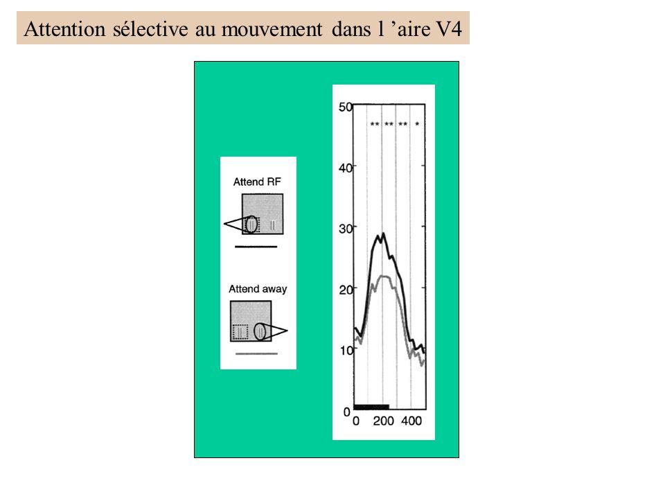 Reynolds et al, 2000 Attention sélective au mouvement dans l aire V4