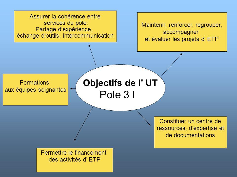 Objectifs de l UT Pole 3 I Assurer la cohérence entre services du pôle: Partage dexpérience, échange doutils, intercommunication Maintenir, renforcer,