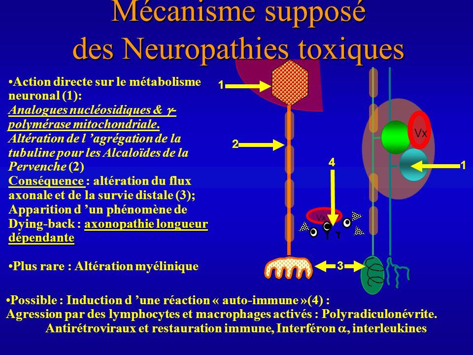 Toxicités Toxicités relatives ( théoriques) : ddC> ddI>d4T>3TC « coasting phenomenon » : poursuite de l aggravation à l arrêt de l analogue nucléosidique « mt-DNA depleting neuropathy » Dalakas 2001 prouvée pour le ddC.