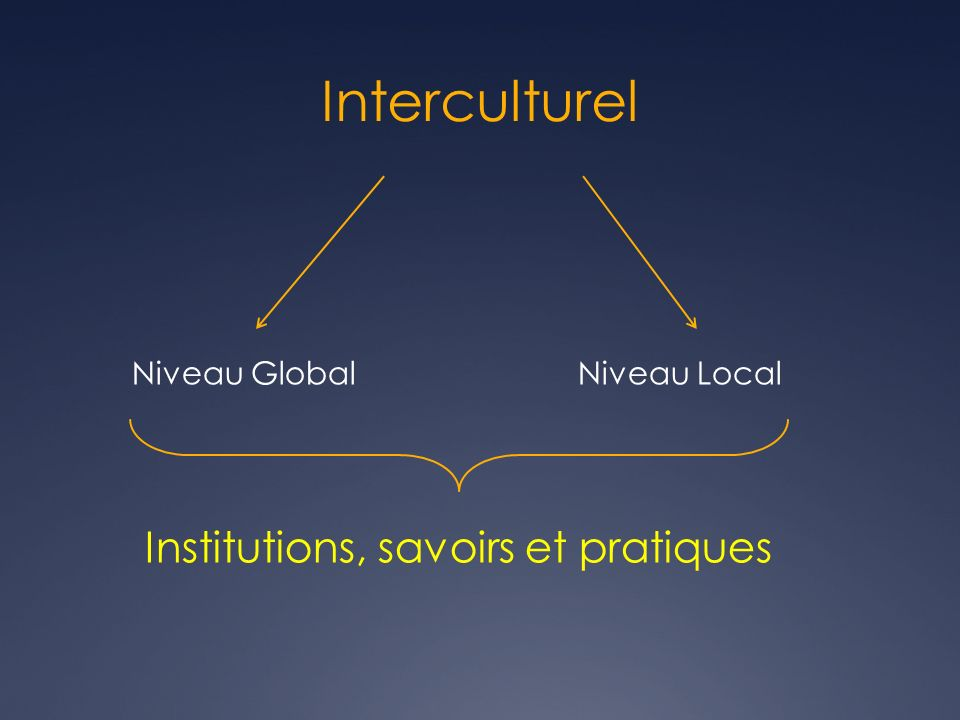 Interculturel Niveau GlobalNiveau Local Institutions, savoirs et pratiques