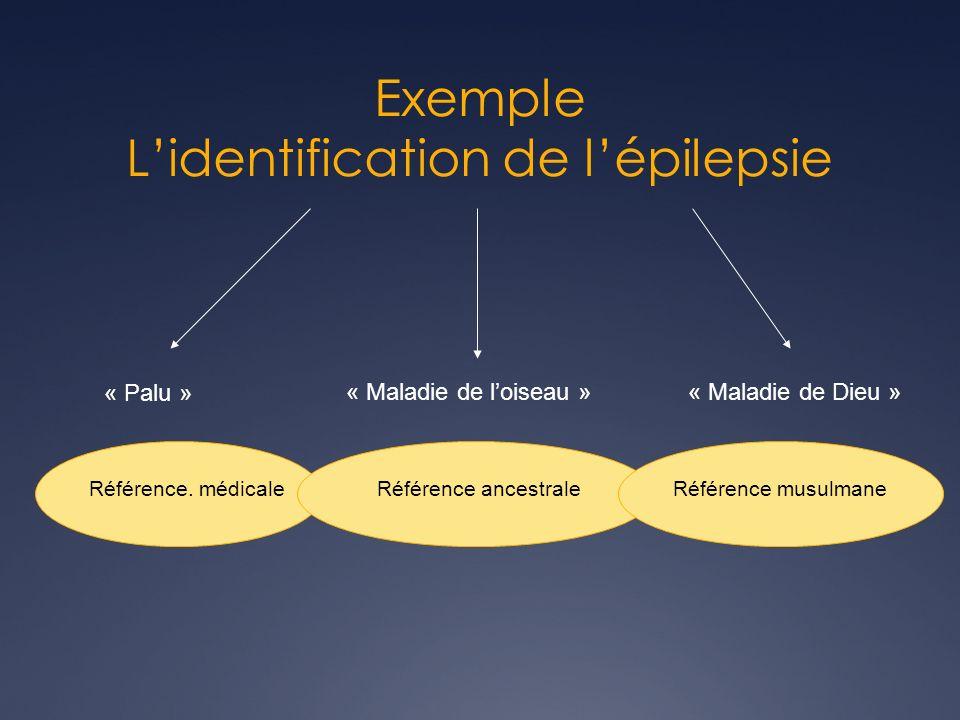 Exemple Lidentification de lépilepsie « Palu » « Maladie de loiseau »« Maladie de Dieu » Référence.