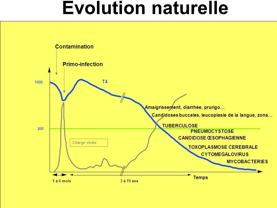 Diagnostic et suivi Évolution naturelle Primo-infection T4 Temps Contamination 1 à 6 mois3 à 15 ans 200 1000 TUBERCULOSE PNEUMOCYSTOSE Candidoses bucc