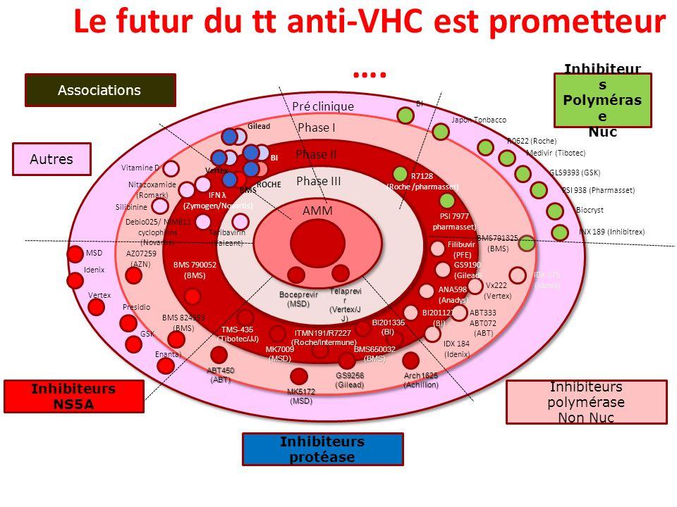 Pré clinique Phase I Phase II Phase III AMM Boceprevir(MSD) Telaprevi r (Vertex/J J) TMS-435(Tibotec/JJ) MK7009(MSD) ITMN191/R7227(Roche/Intermune) BI